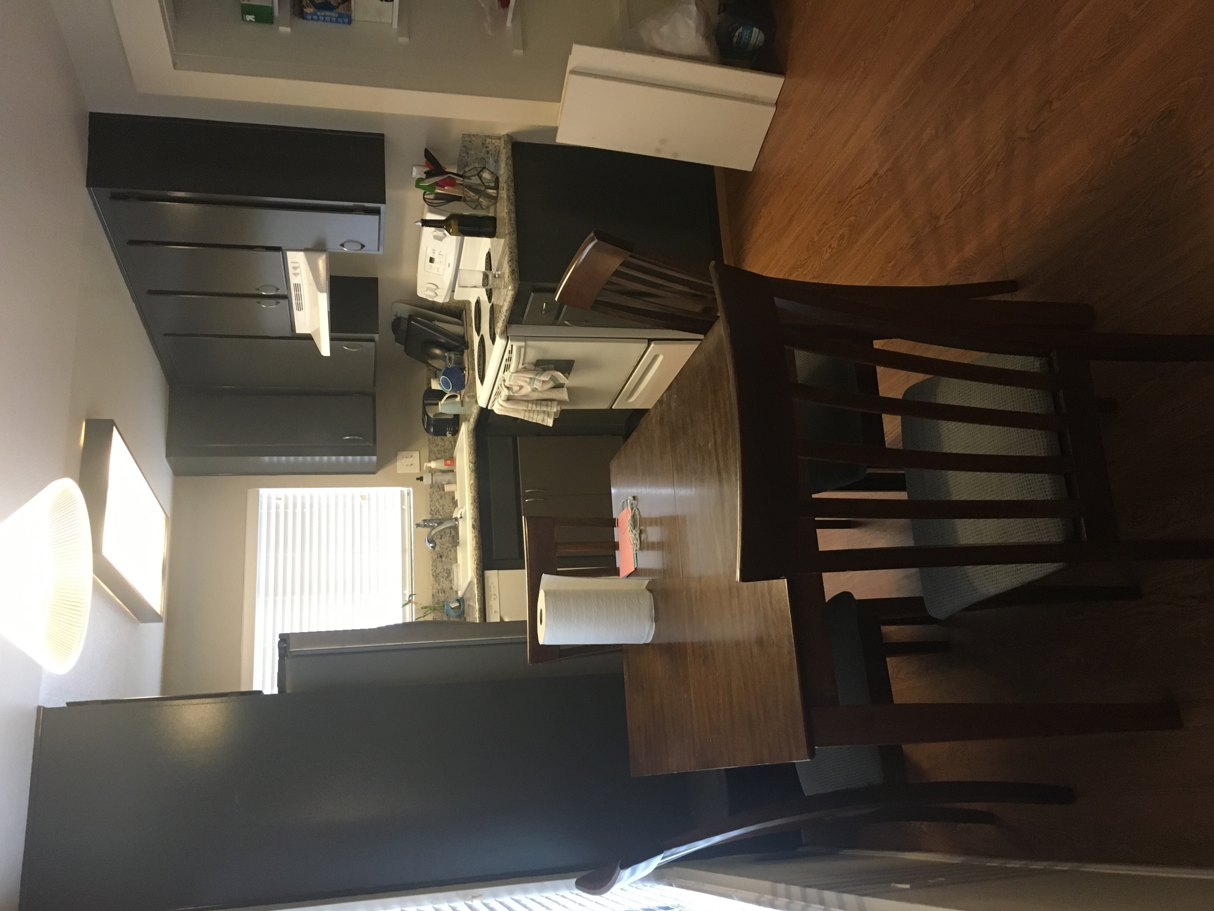 Female roommate wanted in great apartment for great price